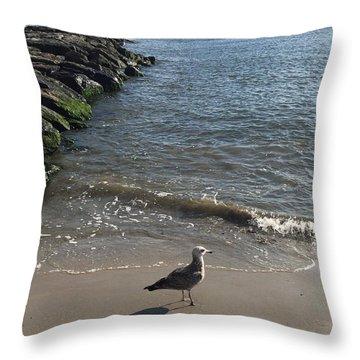 Sea Shadow Throw Pillow