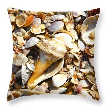 Sea Shells Throw Pillow by David Lee Thompson