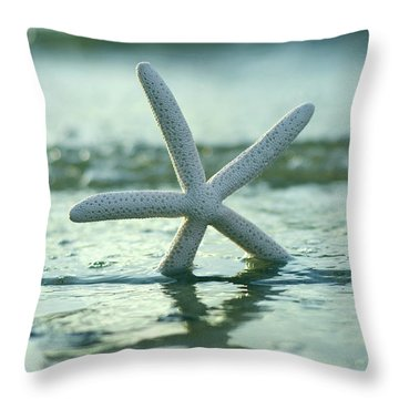 Throw Pillow featuring the photograph Sea Star Vert by Laura Fasulo