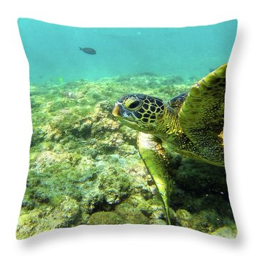 Throw Pillow featuring the photograph Sea Turtle #2 by Anthony Jones