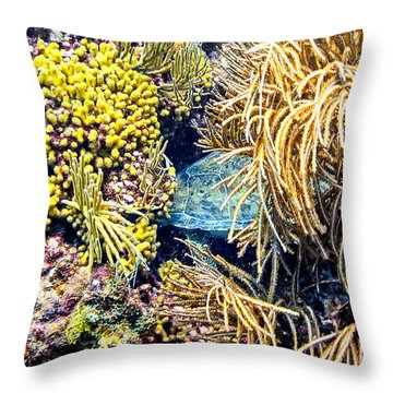 Throw Pillow featuring the photograph Sea Turtle Hiding by Perla Copernik