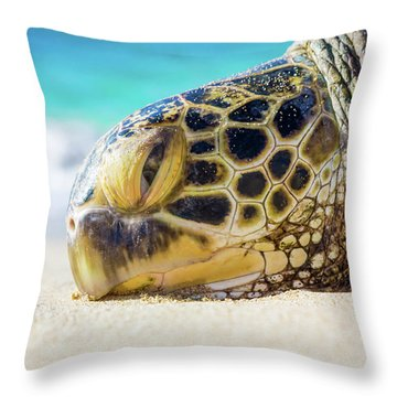 Sea Turtle Resting At The Beach Throw Pillow