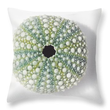 Sea Urchin Throw Pillow