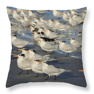 Seabirds On The Beach Throw Pillow