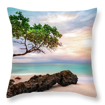 Throw Pillow featuring the photograph Seagrape Tree by Mihai Andritoiu