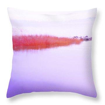 Seagrass Sandbar Throw Pillow
