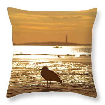 Seagull Admiring Thacher Island Gloucester Ma Good Harbor Beach Throw Pillow