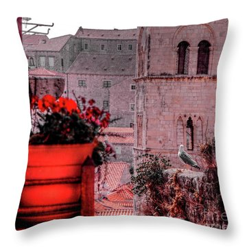 Seagull Admiring The View Throw Pillow