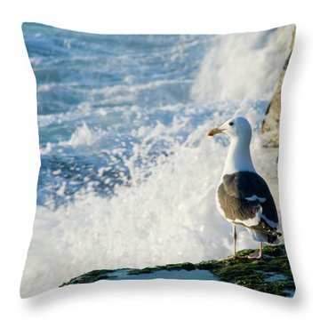 Seagull And The Sea Throw Pillow