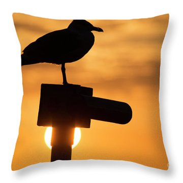 Seagull At Sunset Throw Pillow