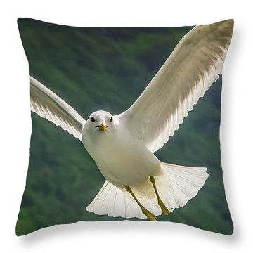 Seagull At The Fjord Throw Pillow