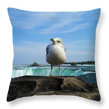 Seagull Checking Out The Photographers Throw Pillow
