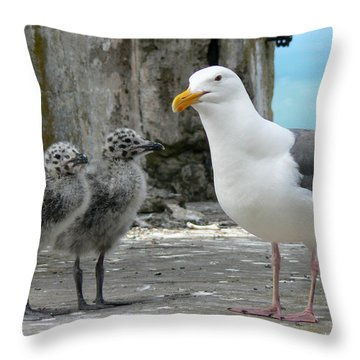 Seagull Family Throw Pillow by Laurel Powell