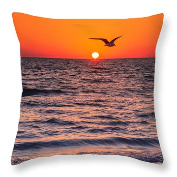 Seagull Hat-trick Throw Pillow by Craig Szymanski