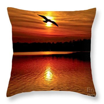 Seagull Homeward Bound Throw Pillow by Carol F Austin