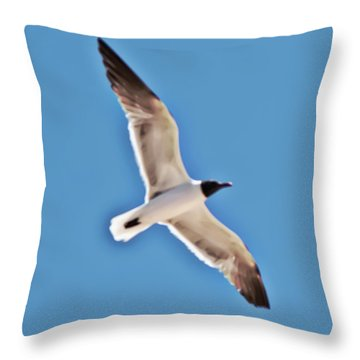Seagull In Flight Throw Pillow by Gina O'Brien
