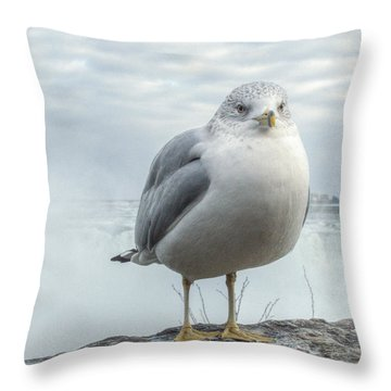 Seagull Model Throw Pillow