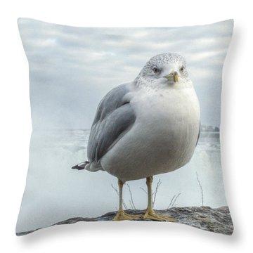 Seagull Model Throw Pillow