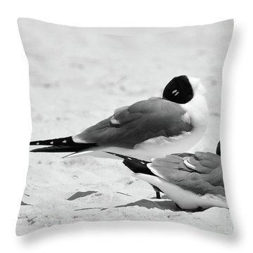 Seagull Nap Time Throw Pillow