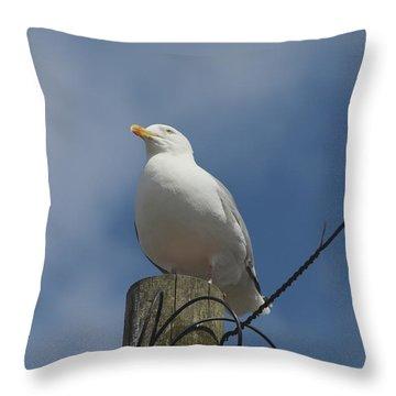 Seagull Perching. Throw Pillow