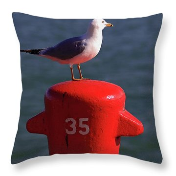 Seagull Number 35 Throw Pillow