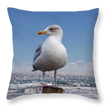 Seagull On The Shoreline Throw Pillow by Phil Perkins