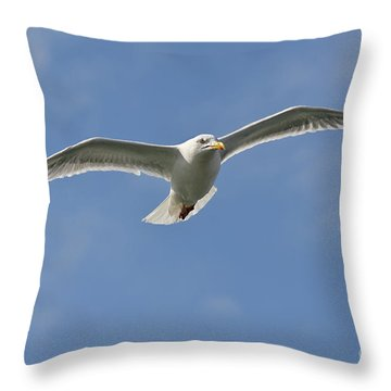 Seagull Patrol Throw Pillow by Steev Stamford