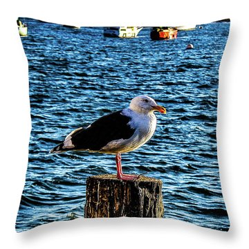 Seagull Perch Throw Pillow