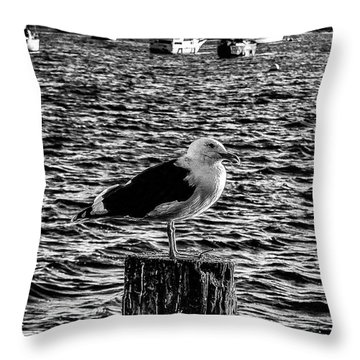 Seagull Perch, Black And White Throw Pillow