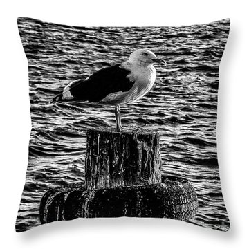 Seagull Perch, Black And White Throw Pillow
