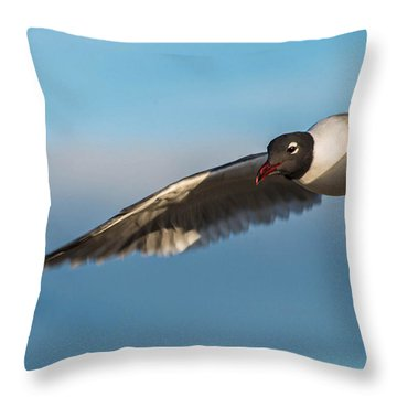 Seagull Portrait In Flight Throw Pillow