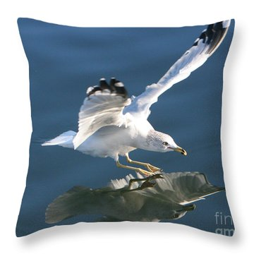 Seagull Reflection Throw Pillow