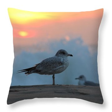 Seagull Seascape Sunrise Throw Pillow by Robert Banach