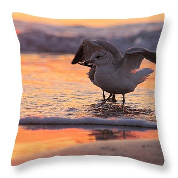 Seagull Stretch At Sunrise Throw Pillow