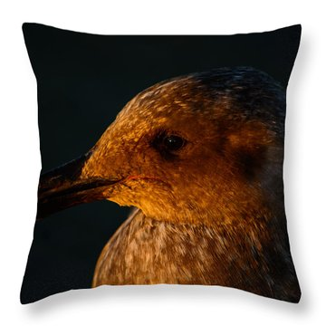Throw Pillow featuring the photograph Seagull Sunrise by Tikvah's Hope