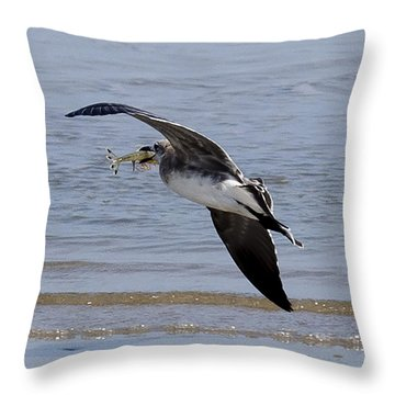 Seagull With Shrimp Throw Pillow