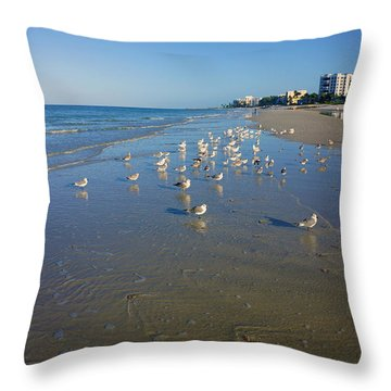 Seagulls And Terns On The Beach In Naples, Fl Throw Pillow