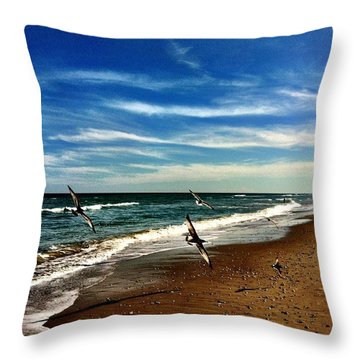 Seagulls At The Beach Throw Pillow by Carlos Avila
