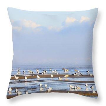 Seagulls On A Beach Throw Pillow by Svetlana Sewell