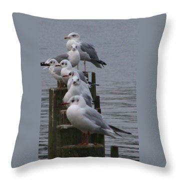 Seaguls 4 Throw Pillow by Cristina Rettegi