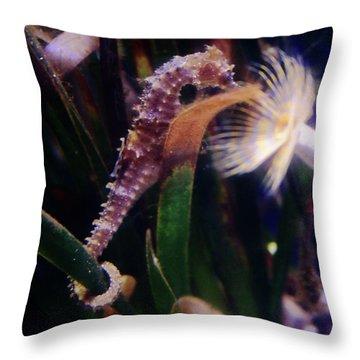 Seahorse Throw Pillow by Ana Mireles