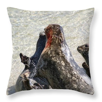 Seal Fight Throw Pillow by Anthony Jones