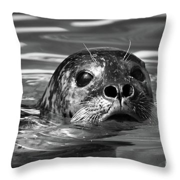 Seal In Water Throw Pillow