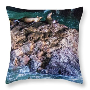 Throw Pillow featuring the photograph Seal  Rock by Jonny D