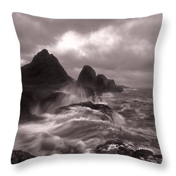Seal Rock Thunder Throw Pillow