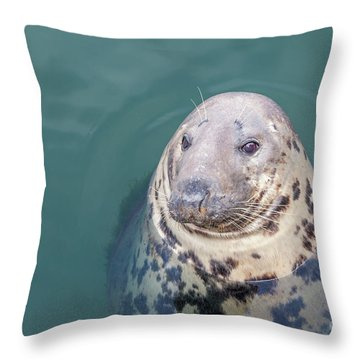 Seal With Long Whiskers With Head Sticking Out Of Water Throw Pillow