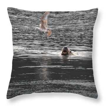 Sealion Vs Seagull Throw Pillow