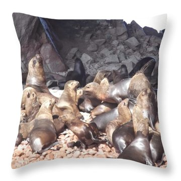 Ballestas Islands' Sealions Throw Pillow