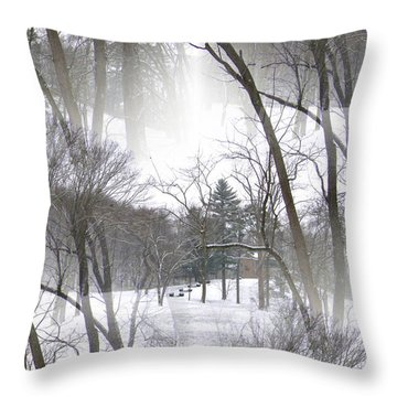 Throw Pillow featuring the photograph Seamless Home On The Hill by Skyler Tipton