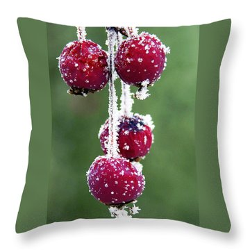 Seasonal Colors Throw Pillow